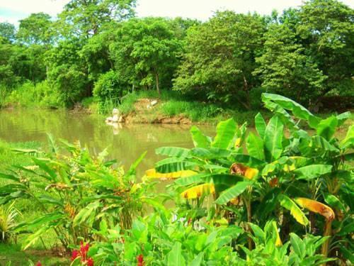 Spiritwind Reef Resort, Dangriga, Belize, today's hot deals at hostels in Dangriga