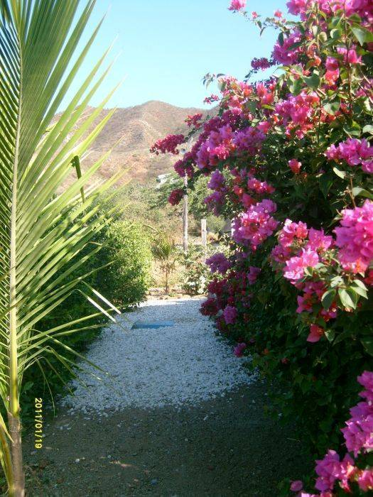 Casa Tara, Santa Marta, Colombia, top 10 places to visit and stay in hostels in Santa Marta
