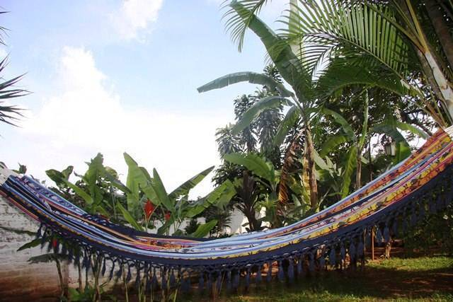 The Green Saman, Cali, Colombia, Colombia hostels and hotels