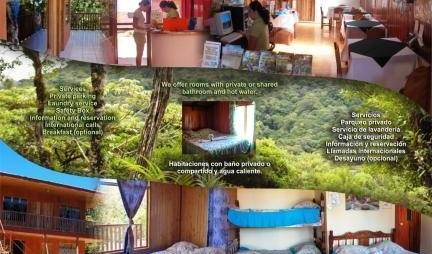 Hostel-Cabinas Monteverde Paraiso, bed and breakfast bookings 144 photos