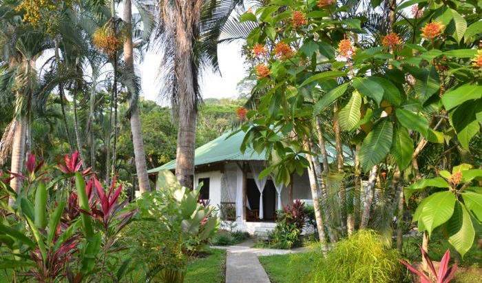 Hotel Villas Riomar -  Dominical, bed and breakfast bookings 25 photos