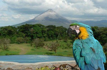 Hotel Arenal Lodge, Volcan Arenal, Costa Rica, Costa Rica bed and breakfasts and hotels
