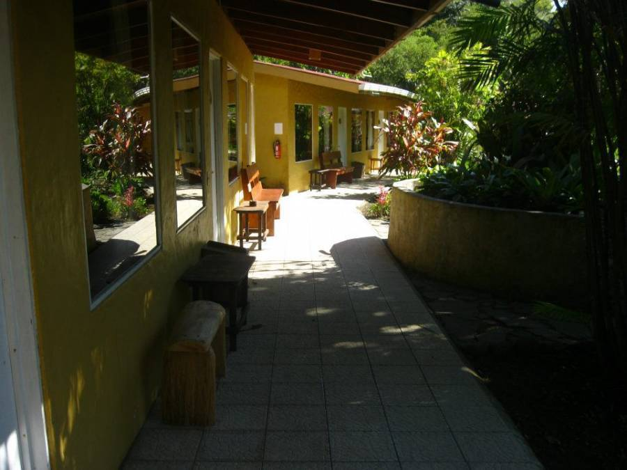 Hotel El Bosque, Monte Verde, Costa Rica, list of best international youth hostels and backpackers in Monte Verde