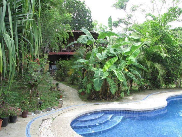 Las Palmeras de Delicias, Cobano, Costa Rica, Costa Rica hostels and hotels