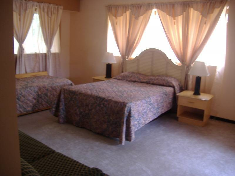 Vivis Place Bed and Breakfast, San Pedro, Costa Rica, go on a cheap vacation in San Pedro