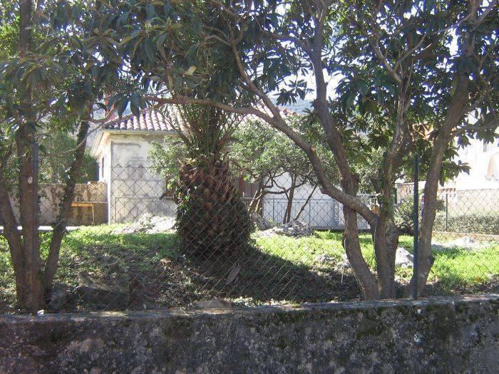 Prlenda House, Gruda, Croatia, best hostels for parties in Gruda