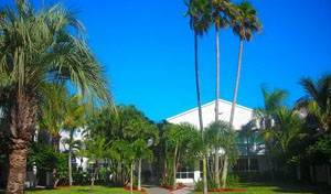 Beachcomber Beach Resort - Get cheap hostel rates and check availability in Saint Pete Beach, youth hostel 9 photos