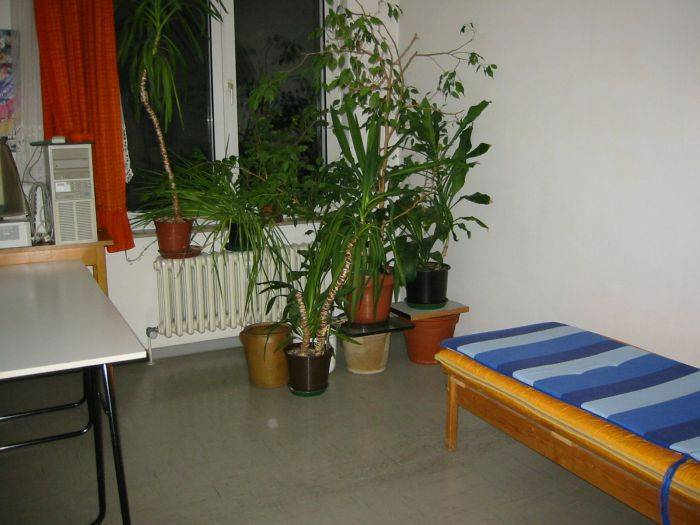 Chimaysaberlin Bed And Breakfast, Berlin, Germany, Germany hostels en hotels