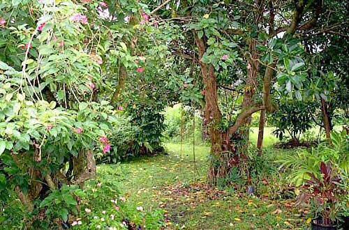 Hana Maui Botanical Gardens BnB, Hana, Hawaii, Hawaii hostels and hotels