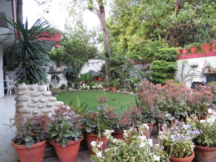 Bed and Breakfast New Delhi, New Delhi, India, guesthouses and backpackers accommodation in New Delhi