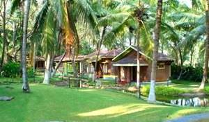 Kairali - The Ayurvedic Healing Village -  Chittur 10 photos