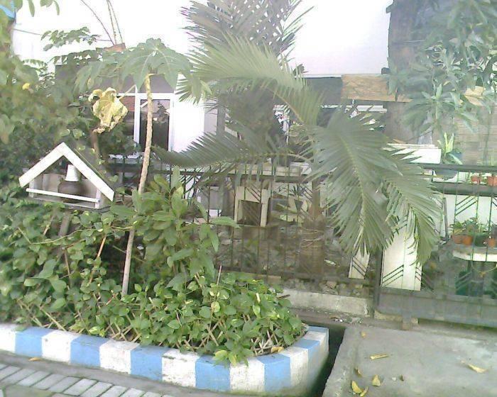 Da Rifi Hostel, Surabaya, Indonesia, top foreign hostels in Surabaya
