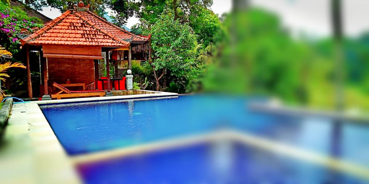 Lotus Guesthouse Sudaji, Buleleng, Indonesia, lowest prices and bed & breakfast reviews in Buleleng