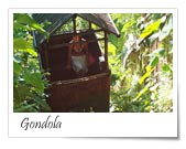 Nandini Bali Jungle Resort and Spa, Ubud, Indonesia, excellent deals in Ubud