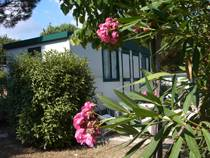 Camping Village I Pini, Rome, Italy, youth hostels and backpackers for sharing a room in Rome