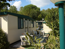 Camping Village I Pini, Rome, Italy, Italy hostels and hotels