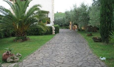 Villa Baiera -  Frascati, bed and breakfast bookings 12 photos