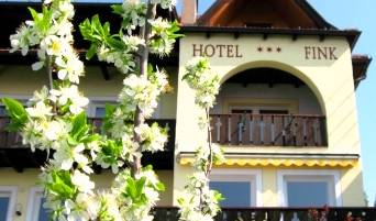 Hotel Fink, small hostels and hostels of all sizes 5 photos