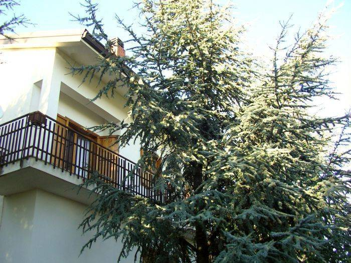 Villa Caterina, Nicolosi, Italy, cheap lodging in Nicolosi