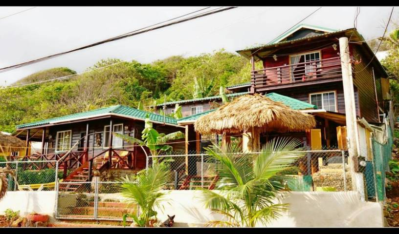 Villa Rasta -  Long Bay, bed and breakfast bookings 26 photos