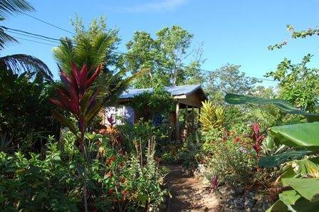 Judy House Cottages and Rooms, Negril, Jamaica, reservations for winter vacations in Negril