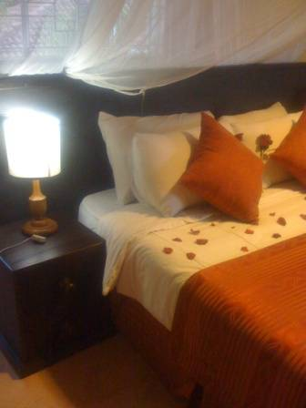 Bush House, Nairobi, Kenya, the most trusted reviews about hostels in Nairobi