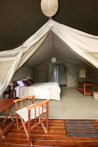 Wildebeest Camp, Nairobi, Kenya, Kenya hostels and hotels