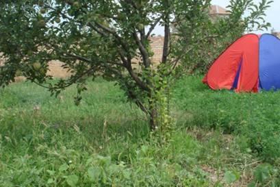Backpackers Hostel Free and Easy, Bishkek, Kyrgyzstan, Beste hostels voor een bezoek en vakantie in Bishkek