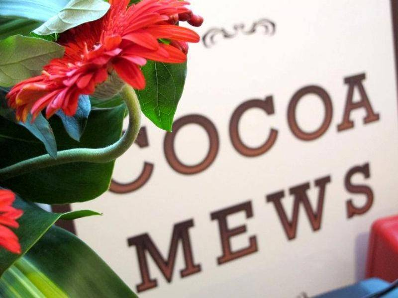 Cocoa Mews, George Town, Malaysia, easy trips in George Town