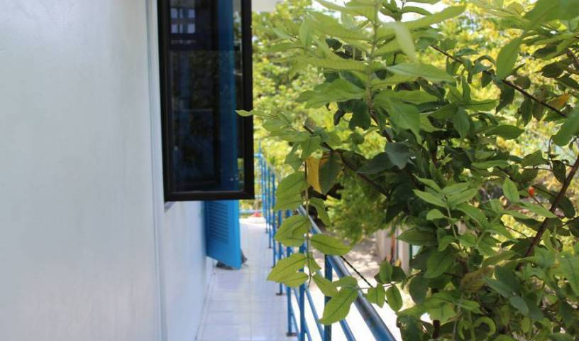Gulhi Guest House -  Gulhi Island 15 photos