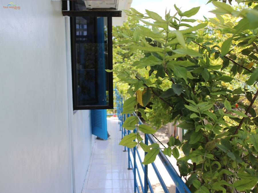 Gulhi Guest House, Gulhi Island, Maldives, Maldives bed and breakfasts and hotels