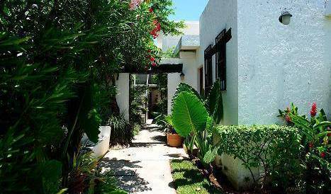 Haina Hostal, travel locations with volunteering opportunities in Holbox, Mexico 12 photos