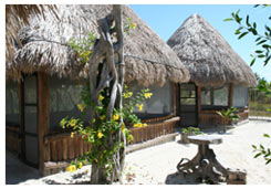 Hostel and Cabanas Ida y Vuelta Camping, Holbox, Mexico, Mexico bed and breakfasts and hotels