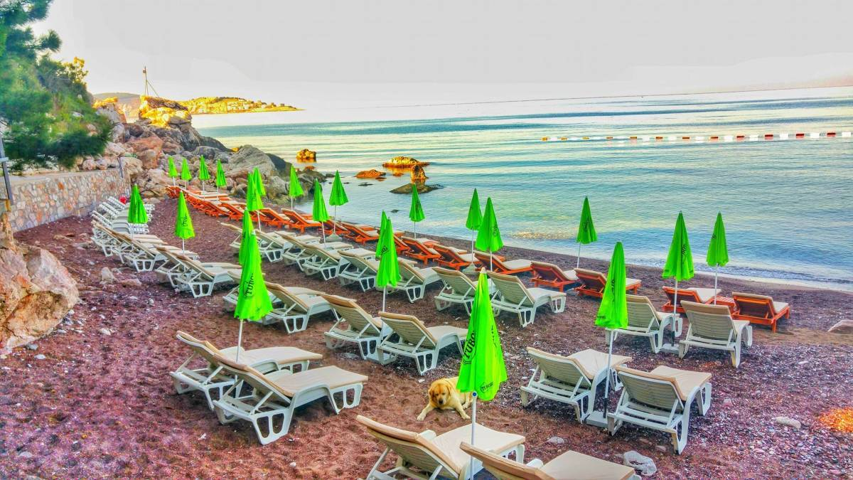 Apartments Castello - Red Beach, Bar, Montenegro, Montenegro hostels and hotels