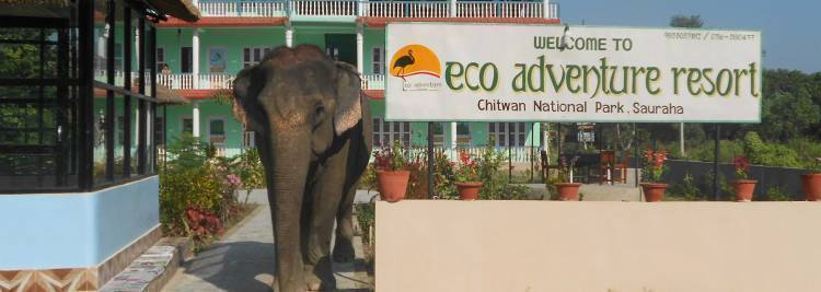 Eco Adventure Resort, Bharatpur, Nepal, highly recommended travel bed & breakfasts in Bharatpur