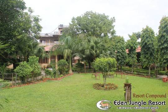 Eden Jungle Resort, Chitwan, Nepal, budget hostels in Chitwan