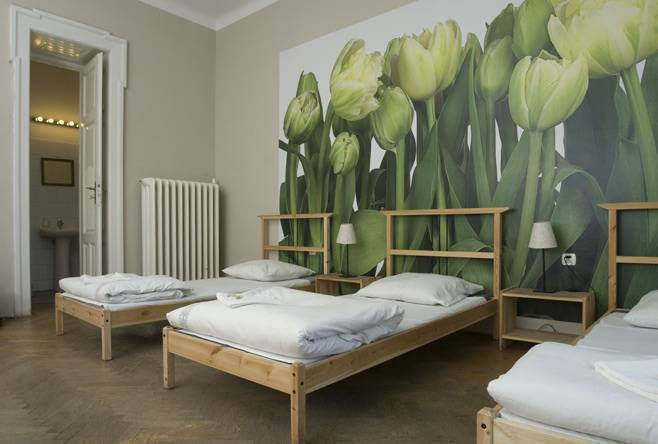 Lemon Hostel, Krakow, Poland, hostels with the best beds for sleep in Krakow
