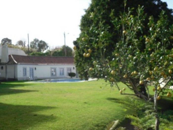 Quinta de Cima, Casas Novas, Portugal, reviews about HostelTraveler.com in Casas Novas