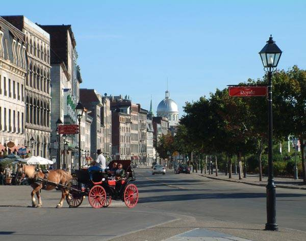 The Lovely Hotel, Montreal, Quebec, hostels near ancient ruins and historic places in Montreal