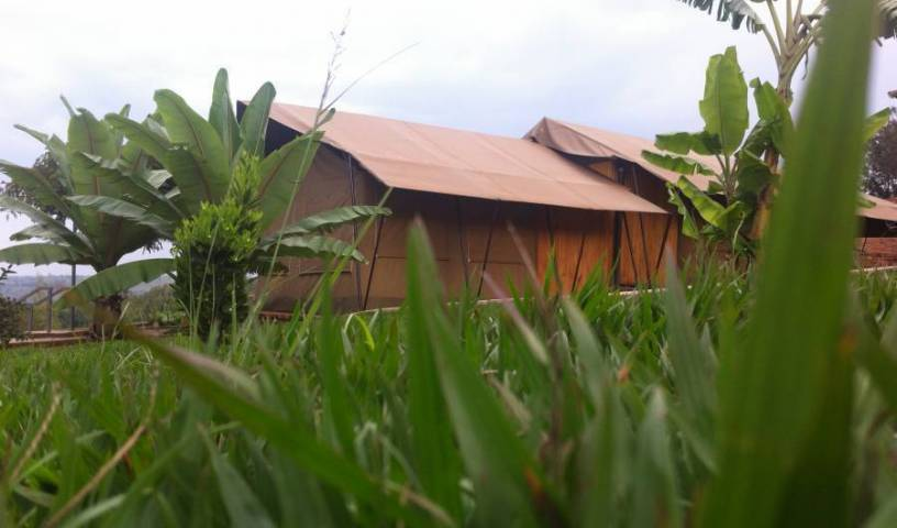 Discover Rwanda Kayonza Eco-Lodge, bed and breakfast bookings 44 photos