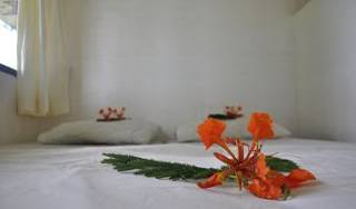 Richmond Vale Nature and Hiking Center, pleasant places to stay 12 photos