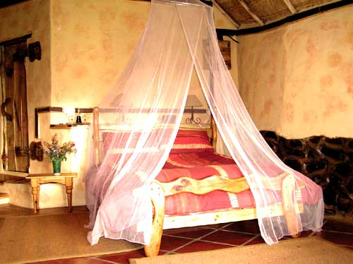 Antbear Guest House, Estcourt, South Africa, explore things to see, reserve a hostel now in Estcourt
