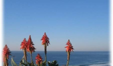 Blue Sky Mining Backpackers And Lodge - Get cheap hostel rates and check availability in Durban 7 photos