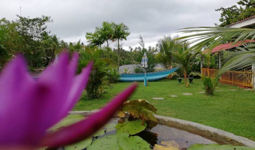 Bluewhale Lagoon Resort - Search for free rooms and guaranteed low rates in Ahangama, Unawatuna, Sri Lanka hostels and hotels 19 photos
