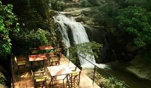 Ella Jungle Resort 17 photos