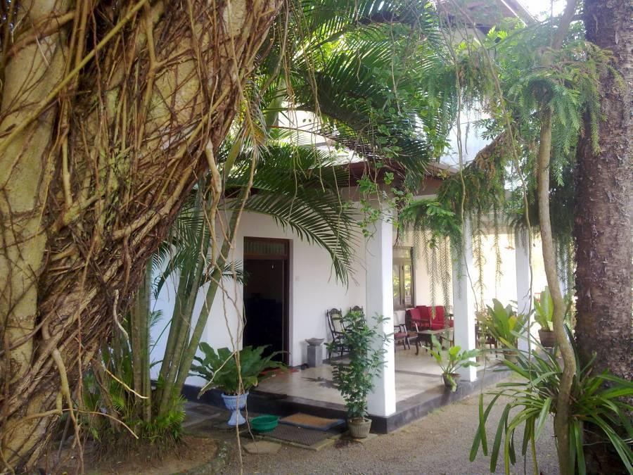 Sea Front, Hikkaduwa, Sri Lanka, popular vacation spots in Hikkaduwa
