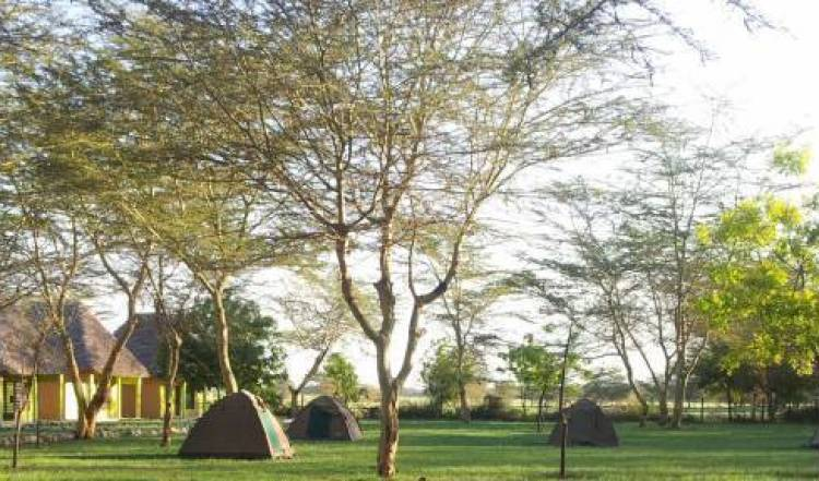 Eco Boma Camp -  Mto wa Mbu, bed and breakfast bookings 14 photos