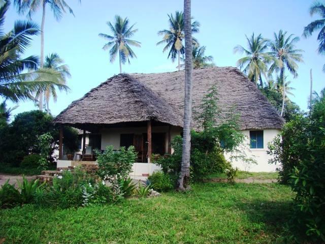 Ushongo Beach Cottages, Ushongo Mtoni, Tanzania, find things to do near me in Ushongo Mtoni