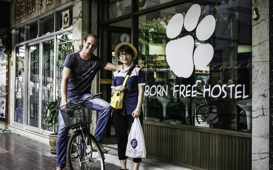 Born Free Hostel - Vista, Bangkok, Thailand, backpackers hostels and backpacking in Bangkok