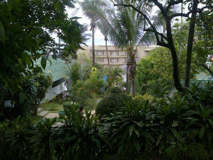 Cool Breeze Bungalow, Kata Beach, Thailand, hostels with rooftop bars and dining in Kata Beach